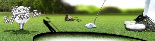 Golfing.sml.jpg